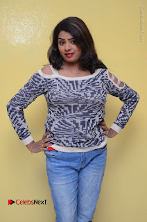 Actress Sridevi Stills in Jeans at No 1 Hero Rajendra Press Meet  0047.JPG