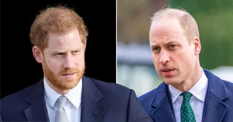 Prince William 'refused to eat lunch with Harry' during Megxit summit