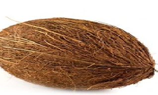 Coconut meaning in hindi, Spanish, tamil, telugu, malayalam, urdu, kannada name, gujarati, in marathi, indian name, marathi, tamil, english, other names called as, translation