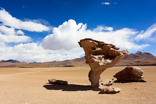 Stone Trees of Bolivia
