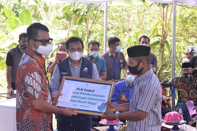 Petani Buah Naga di Tellulimpoe Terima Bantuan Eduwisata PLN