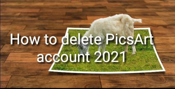 How to delete PicsArt account 2021