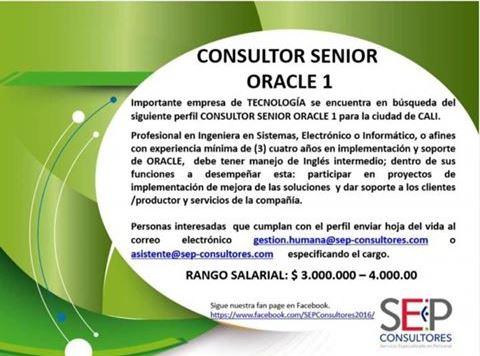Empleo en Cali hoy Consultor Senior Oracle