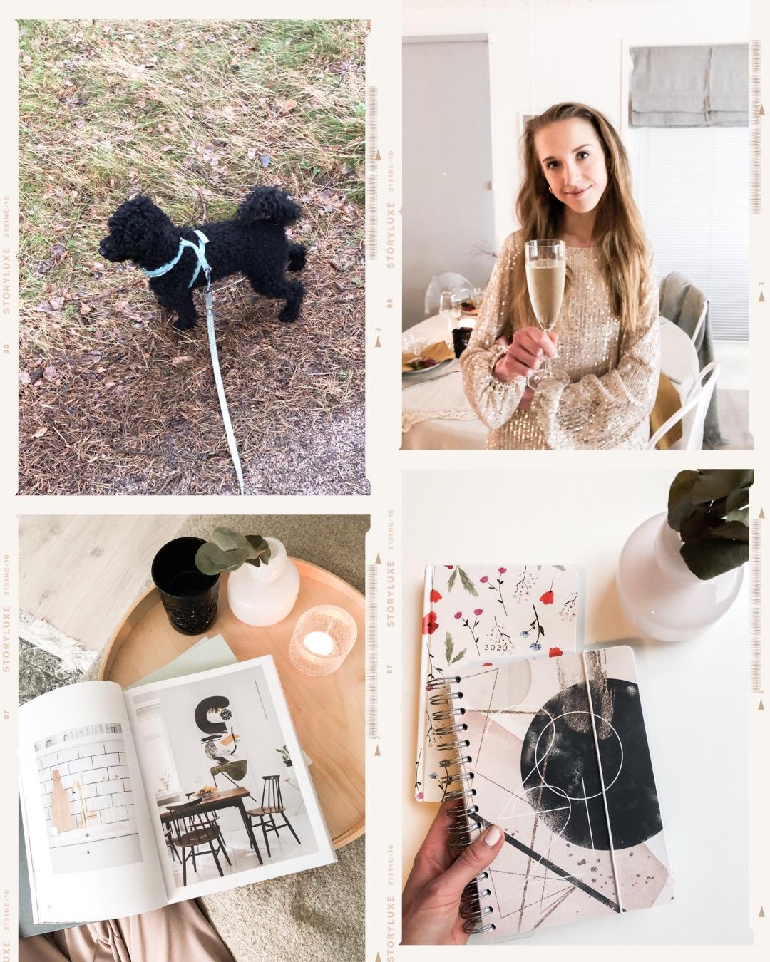 Kääpiövillakoita, paljettimekko, uusi vuosi, sisustuskirja, Personal Planner // Mini poodle, sequin dress, New Year's Eve, interior book, Personal Planner