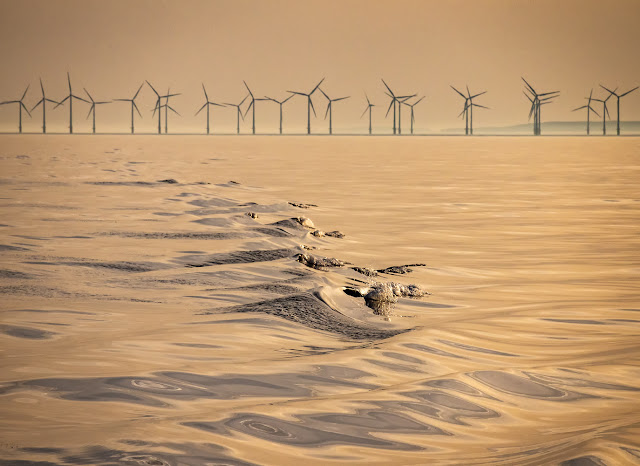 Photo of golden light on the Solway Firth and part of Robin Rigg Wind Farm