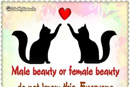 Male beauty or female beauty