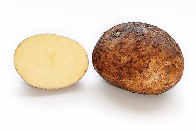 Củ Khoai Tây - Solanum tuberosum - Nguyên liệu làm thuốc Chữa Tê Thấp và Đau Nhức