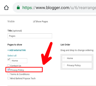 Privacy policy page for blogger