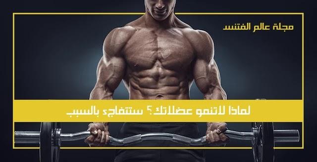 لماذا لاتنمو عضلاتك – ستتفاجئ بالسبب