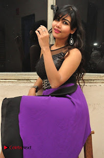 Telugu Actress Rachana Smith Stills at Money is Honey Audio Release  0035.jpg