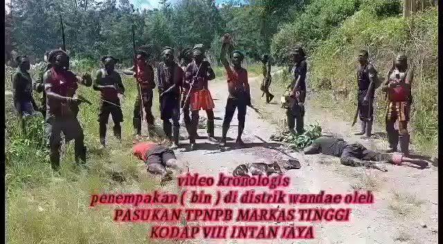 Gerombolan Separatis Teroris Papua Makin Beringas Jelang Jokowi Pidato di Sidang Umum PBB