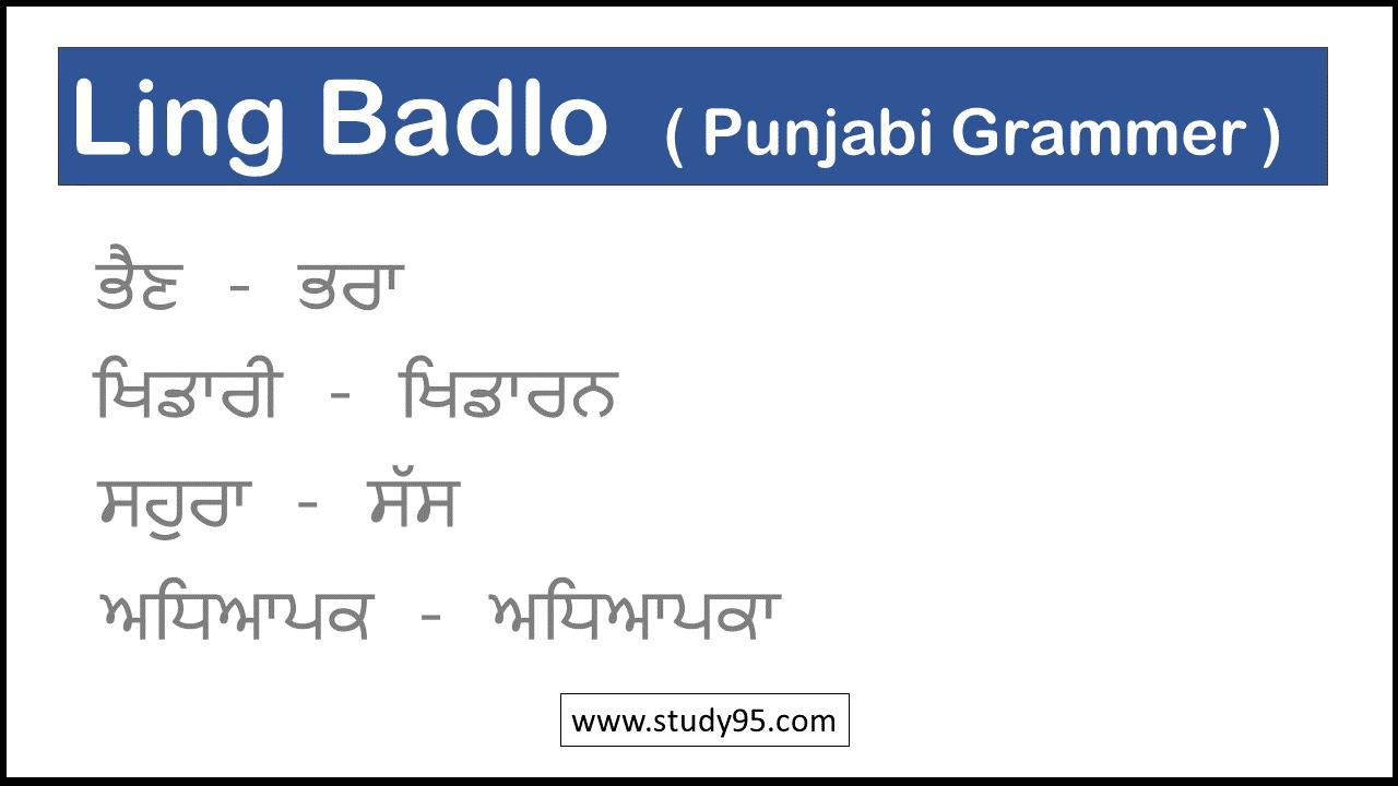 Ling Badlo in Punjabi for class 2