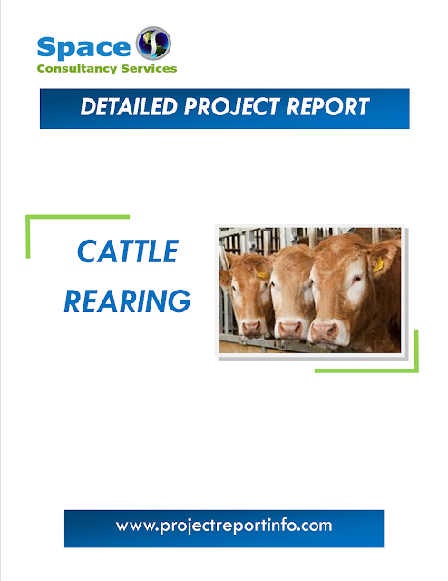 Project Report on Cattle Rearing