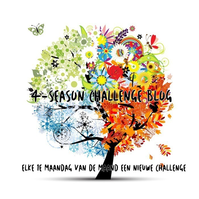 4 Seasons Challenge Blog