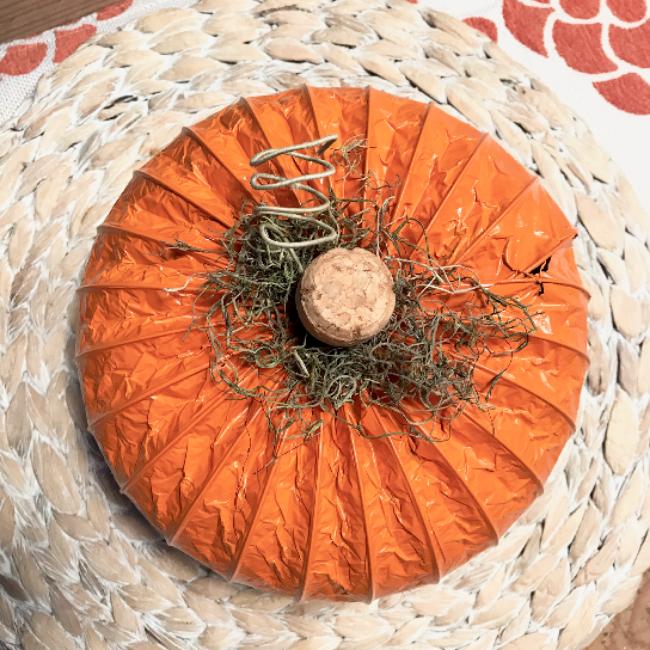 Top view of orange dryer hose pumpkin