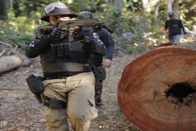 Trator e cerca de 700 m³ de madeira ilegal são apreendidos durante operação na Flona do Jamari em RO