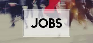 7 Job Vacancies at Nyang'hwale District Council