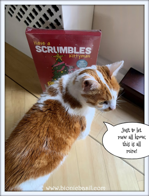 Feline Fiction on Fridays #111 at Amber's Library ©BionicBasil® Scrumble's Charity Advent Calendar - Amber - No I'm Not Sharing