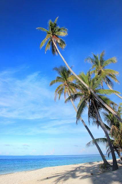 """""""Cerita Gue"""" di Kepulauan Anambas (2) - Pulau Durai dan Penyu Laut"""