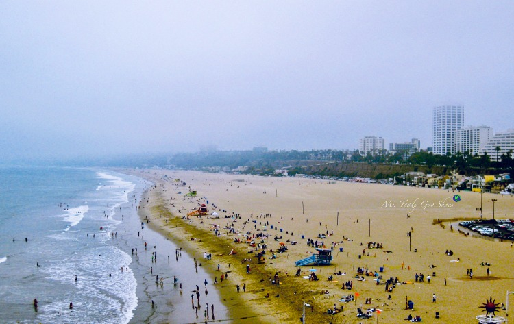 Santa Monica, California, one of the world's beautiful beaches | Ms. Toody Goo Shoes