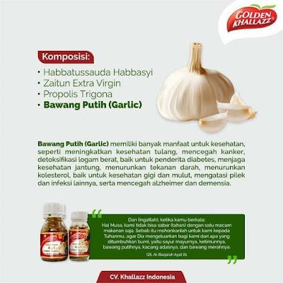 Manfaat Bawang Putih (Garlic)