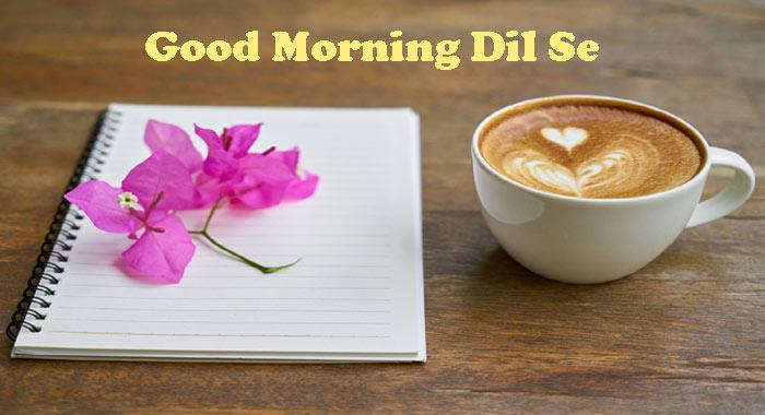 सुबह की प्यारी से रोनक || Good Morning Shayari in Hindi
