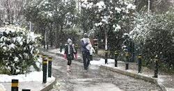 Στα λευκά «ντύθηκε» η Αττική κατά τη διάρκεια της νύχτας. Η χιονόπτωση ήταν σφοδρή από χθες το απόγευμα και συνεχίστηκε όλο το βράδυ με απο...