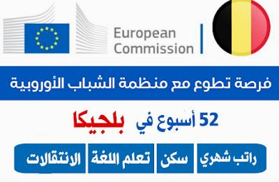 فرصة التطوع في بلجيكا ضمن بوابة الشباب الأوروبية ممولة بالكامل لجميع الطلاب