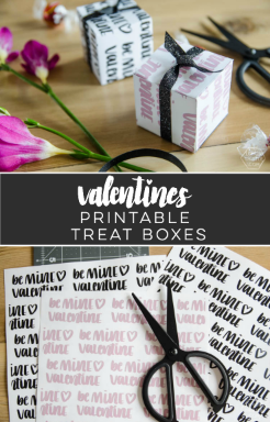 Valentine's treat boxes
