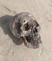 Crânio usado em ritual de bruxaria é encontrado em praia no litoral do Piauí