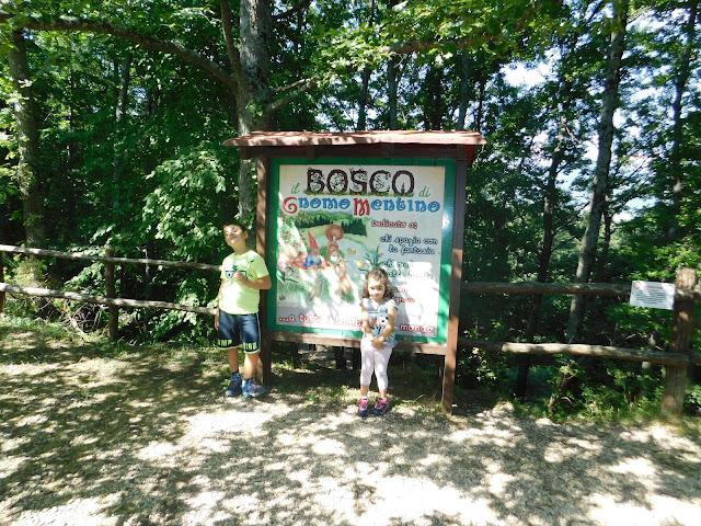 Bosco dello Gnomo Mentino