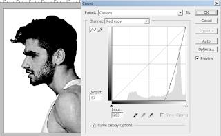 mengatur contras foto, mengatur area seleksi foto, menyeleksi rambut