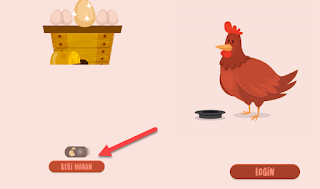 Cara Beri Makan Ayam Imlek 2017