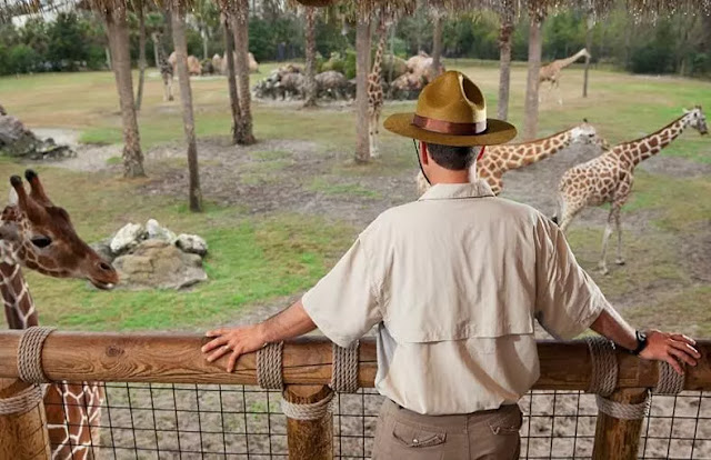 Zookeeper Dreams Interpretations and Meanings
