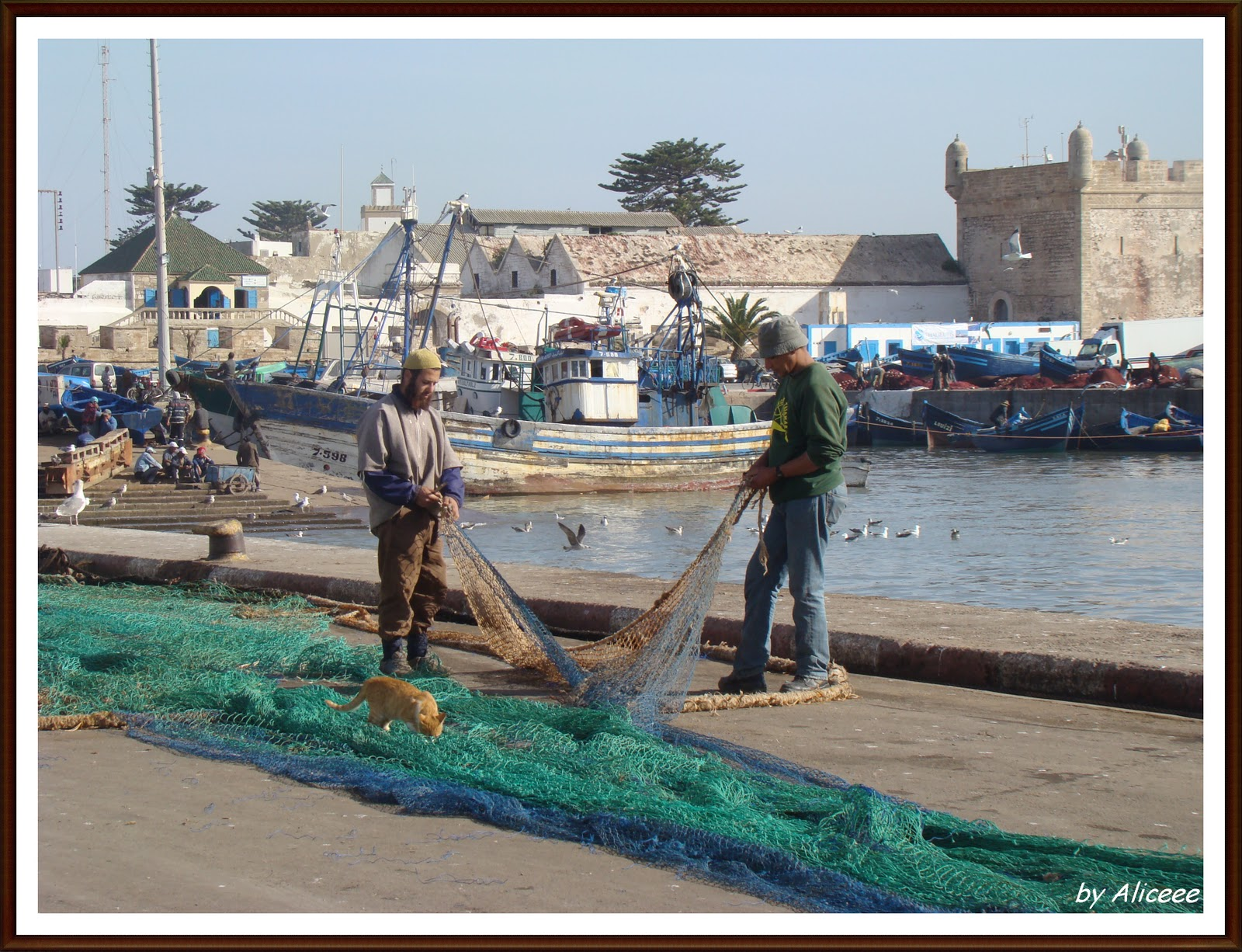 viata-in-port-maroc