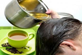 Cara Mengatasi Rambut Rontok Secara Alami, rambut rontok, rambut rontok alami, cara mengatasi rambut rontok dengan bahan alami, lidah buaya untuk rambut, alpukat untuk ranmbut, teh hijau untuk rambut, jeruk nipis untuk rambut