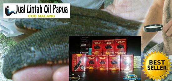 agen minyak lintah papua asli di malang jual lintah oil pembesar