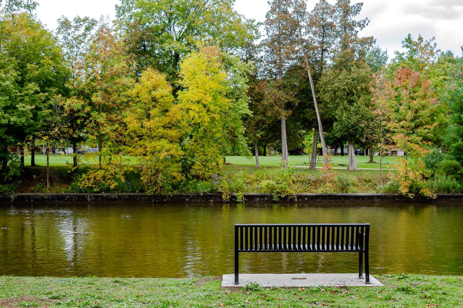 3 Best Regions To Buy A House in Canada in 2021, Guelph