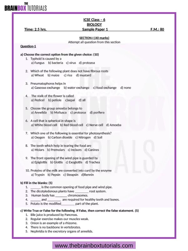 Icse question papers for class 6 pdf esl book review proofreading websites ca