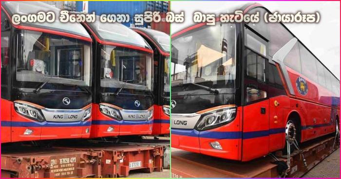https://www.gossiplankanews.com/2019/06/sri-langama-new-busses.html#more