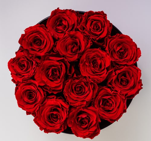 Valentine gift options – Better options than roses from Auraa Luxury Living.