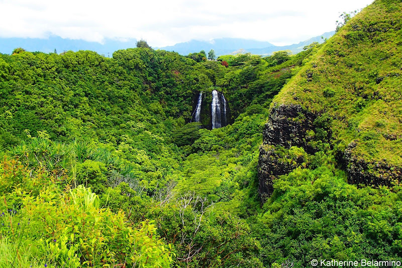 'Opaeka'a Falls 10 Things to Do in Kauai