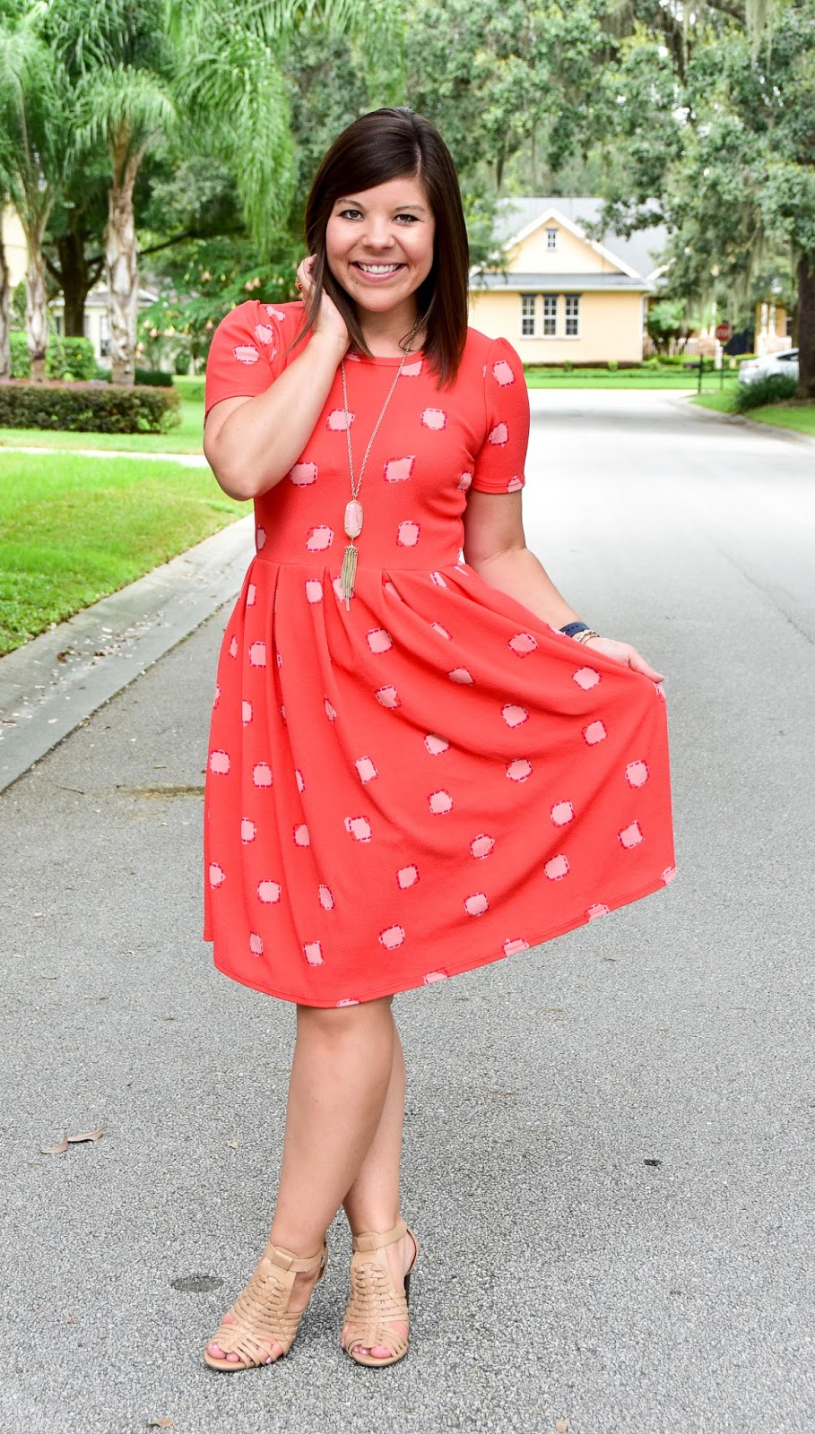 Workweek Chic: LulaRoe Amelia Dress