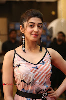 Actress Pranitha Subhash Pos in Short Dress at SIIMA Short Film Awards 2017 .COM 0145.JPG