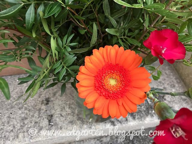 Gerbera im Blumenstrauss