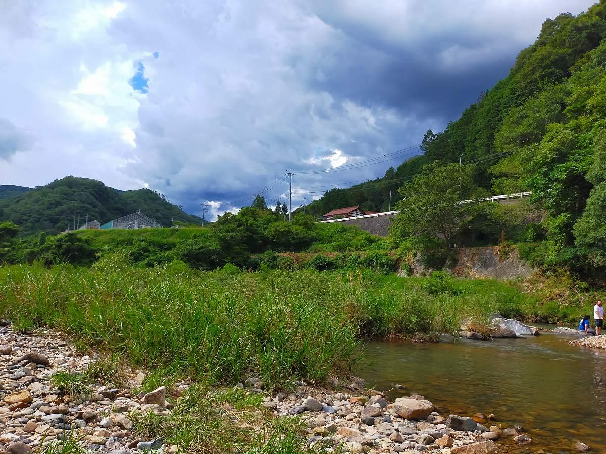 君田こども遊園地の川。緑豊かです。