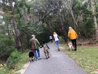Walking thru James Island County Park.