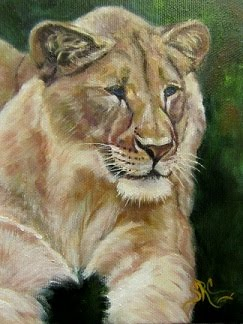 """Queen of the Beast"", lioness in oils"