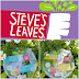 Steve's Leaves salad bowls