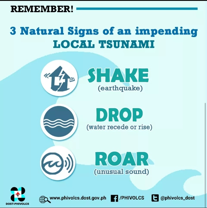 3 Natural Signs of an Impending Tsunami Poster